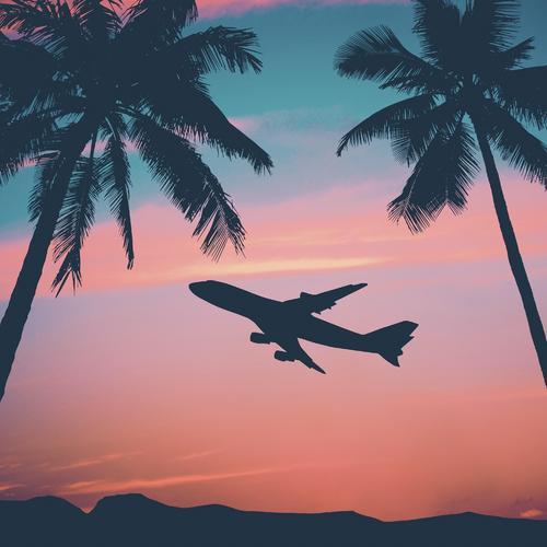 avion-coucher-soleil-palmier-vacances-main-10629725